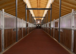 Haupthaus Stall